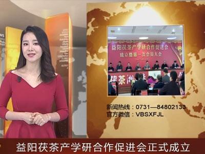 千赢app下载安装茯茶产学研合作促进会成立大会隆重举行