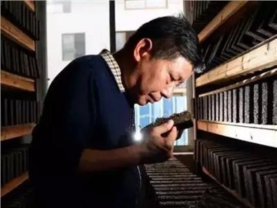 【薪火相传】茯砖茶非遗制作技艺代表性雷竞技最新版人名单公布